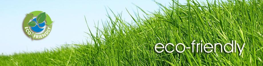 eco friendly Healthy Carpets