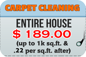 entire house carpet cleaning