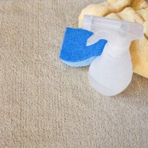 Home made carpet spotter
