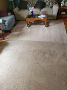 Healthy Carpets Ann Arbor